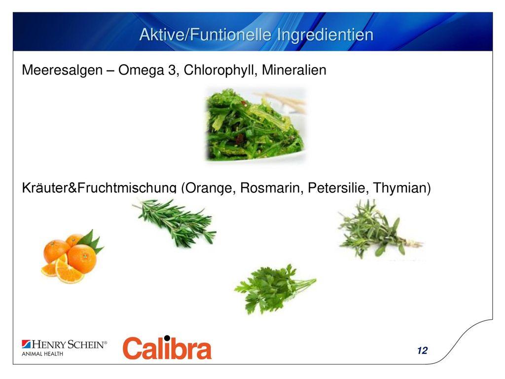 Aktive/Funtionelle Ingredientien
