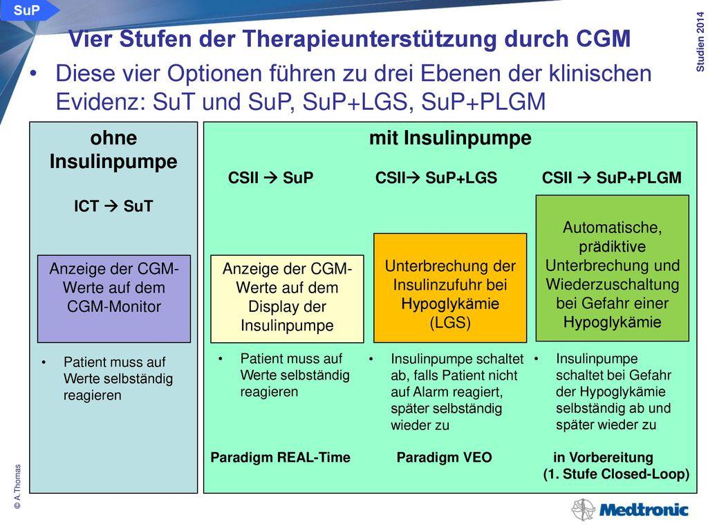 Klinische Effizienz der Therapieunterstützung von CGM/SuP