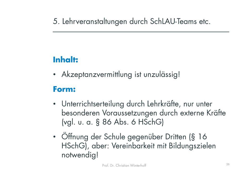 5. Lehrveranstaltungen durch SchLAU-Teams etc.
