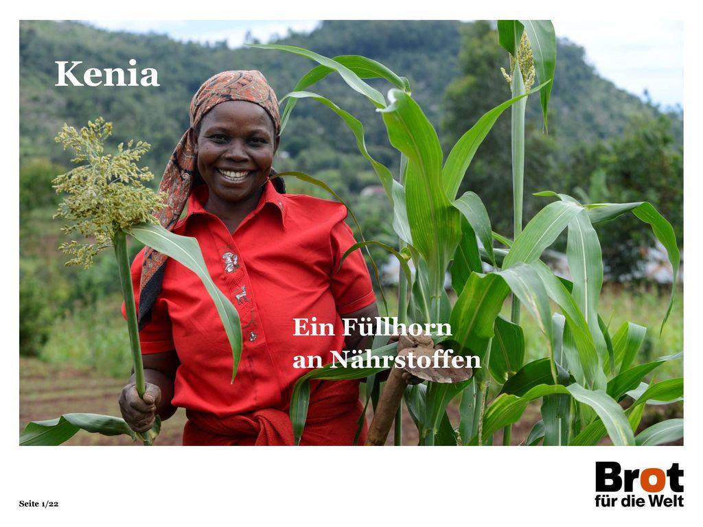 Kenia Ein Füllhorn an Nährstoffen 1