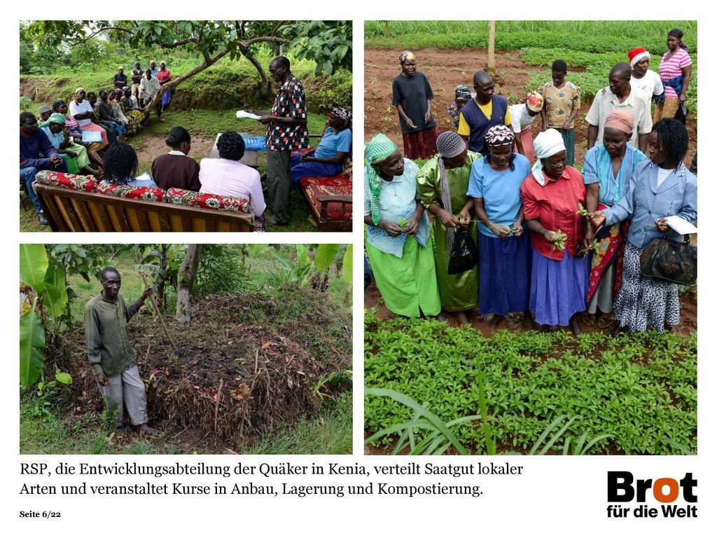 RSP, die Entwicklungsabteilung der Quäker in Kenia, verteilt Saatgut lokaler Arten und veranstaltet Kurse in Anbau, Lagerung und Kompostierung.