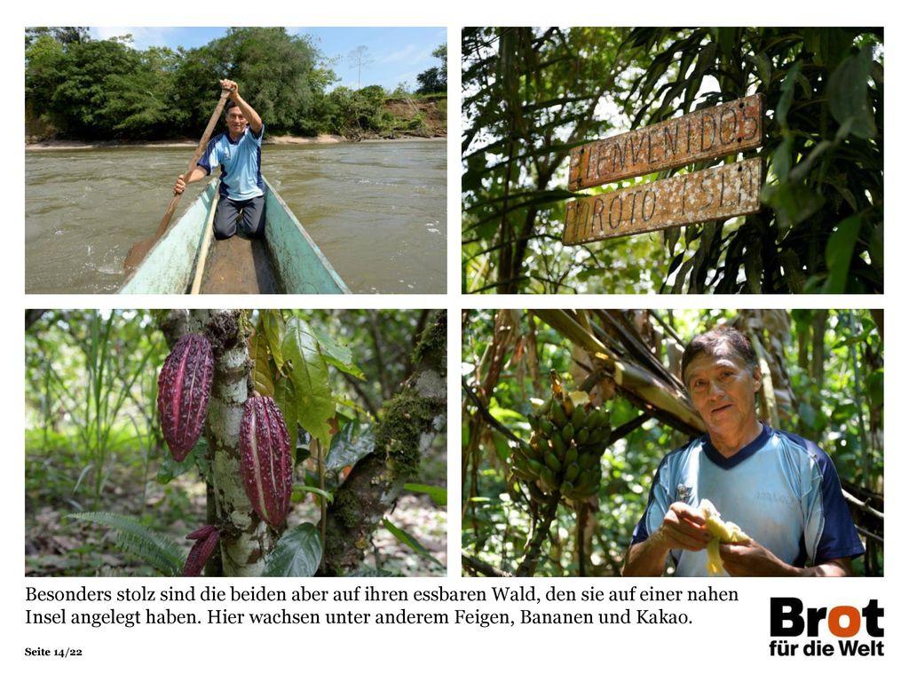 Besonders stolz sind die beiden aber auf ihren essbaren Wald, den sie auf einer nahen Insel angelegt haben. Hier wachsen unter anderem Feigen, Bananen und Kakao.