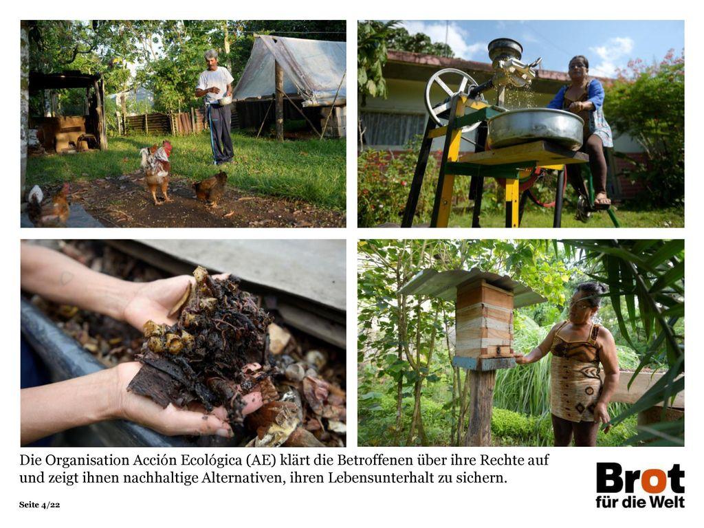 Die Organisation Acción Ecológica (AE) klärt die Betroffenen über ihre Rechte auf und zeigt ihnen nachhaltige Alternativen, ihren Lebensunterhalt zu sichern.