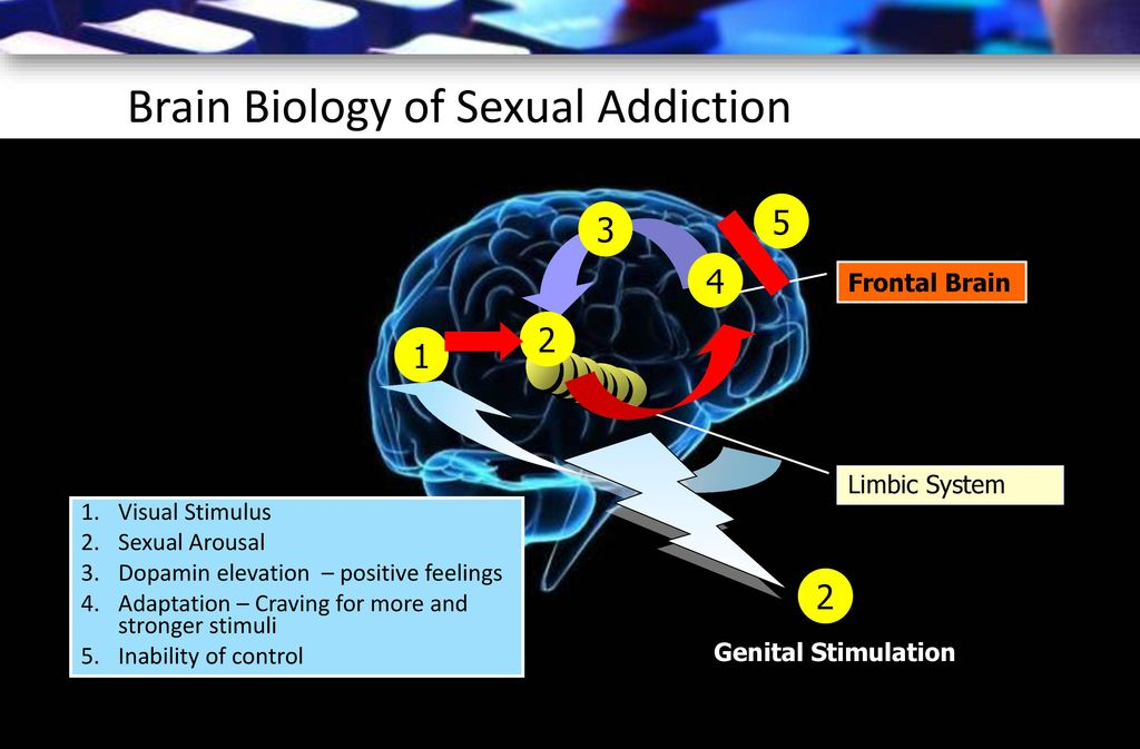 Brain Biology of Sexual Addiction