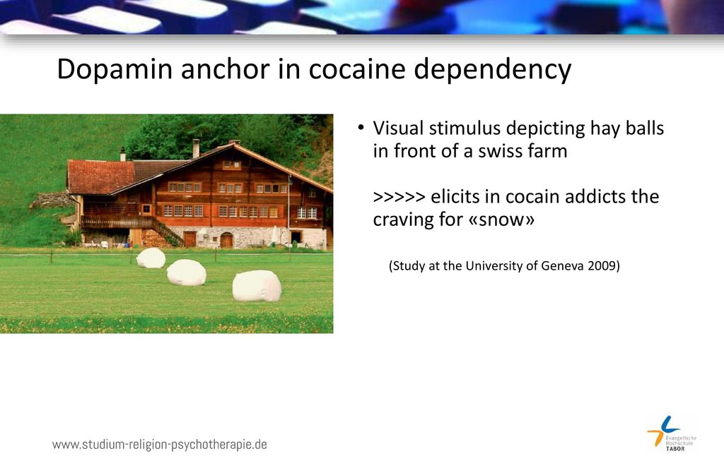 Dopamin anchor in cocaine dependency