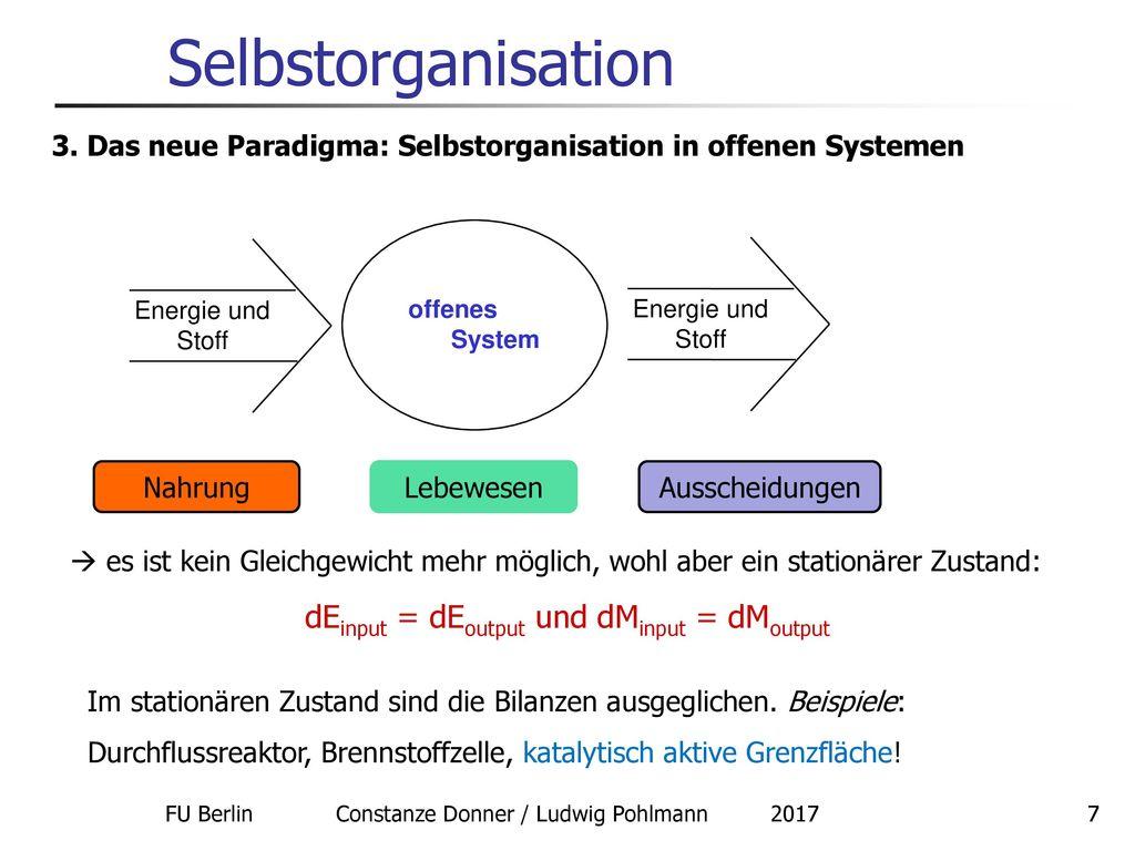 Selbstorganisation dEinput = dEoutput und dMinput = dMoutput