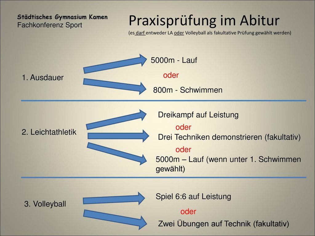 Großzügig Anatomie Und Physiologie Der Praxis Abschlussprüfung ...