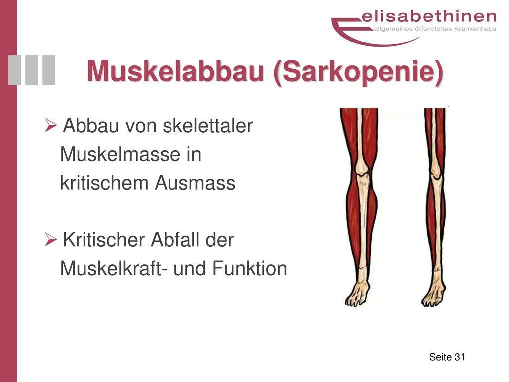 Muskelabbau (Sarkopenie)