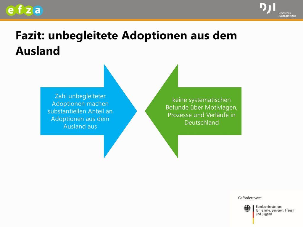 Fazit: unbegleitete Adoptionen aus dem Ausland