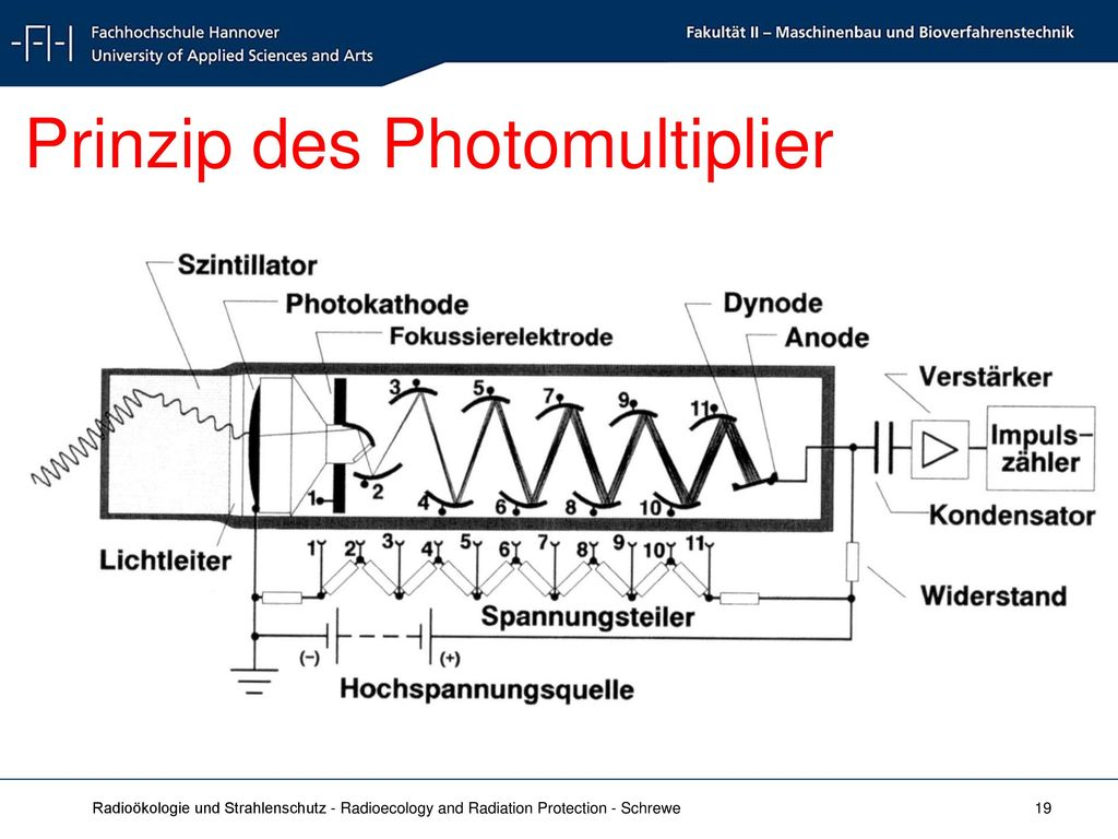 Prinzip des Photomultiplier