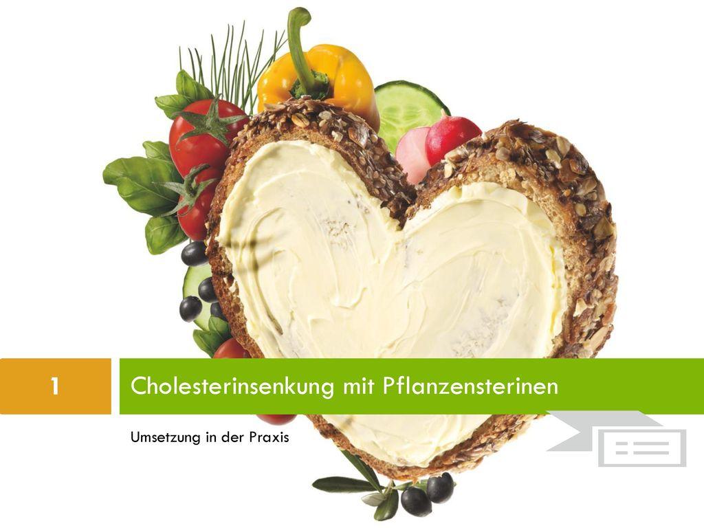 Cholesterinsenkung mit Pflanzensterinen