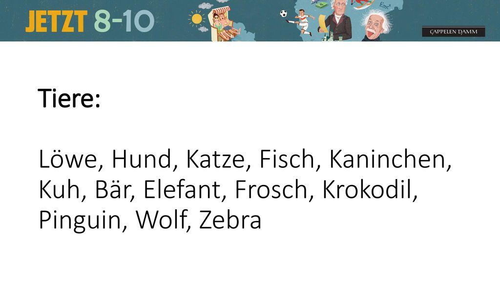Tiere: Löwe, Hund, Katze, Fisch, Kaninchen, Kuh, Bär, Elefant, Frosch, Krokodil, Pinguin, Wolf, Zebra