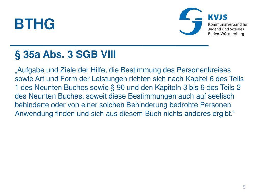 BTHG § 35a Abs. 3 SGB VIII.