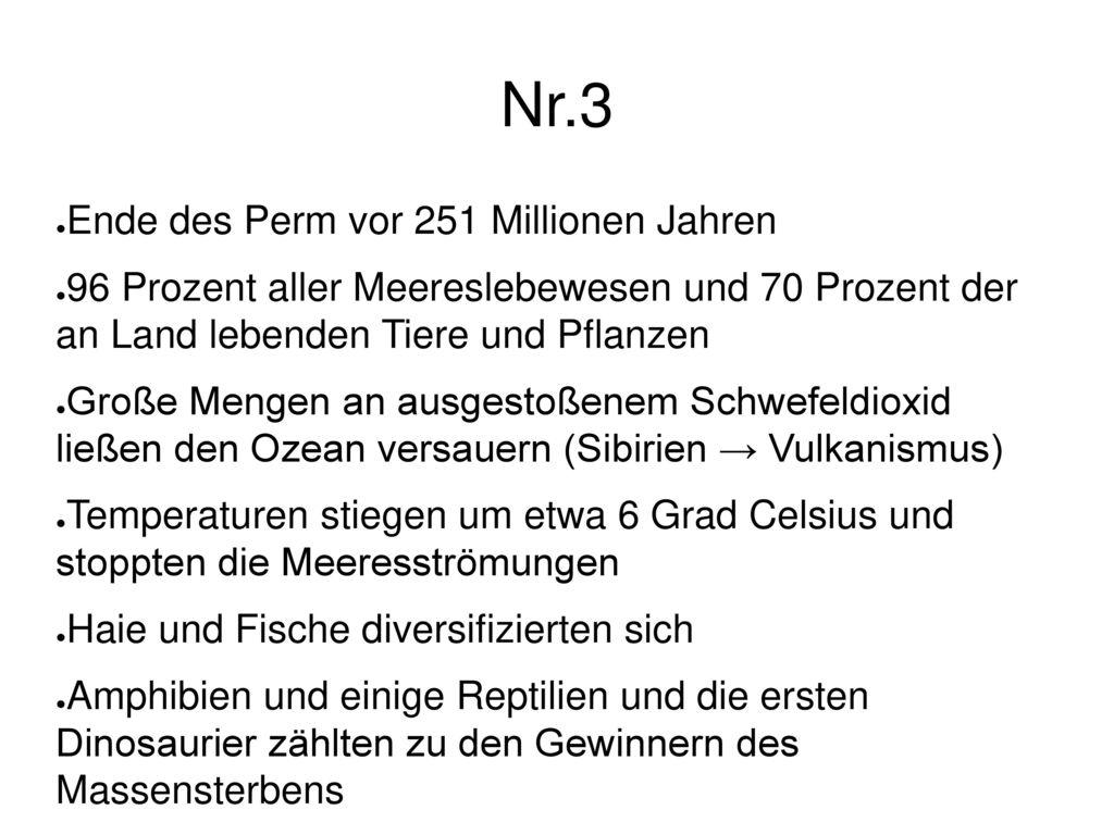 Nr.3 Ende des Perm vor 251 Millionen Jahren