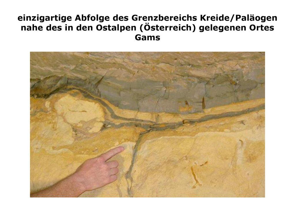einzigartige Abfolge des Grenzbereichs Kreide/Paläogen nahe des in den Ostalpen (Österreich) gelegenen Ortes Gams