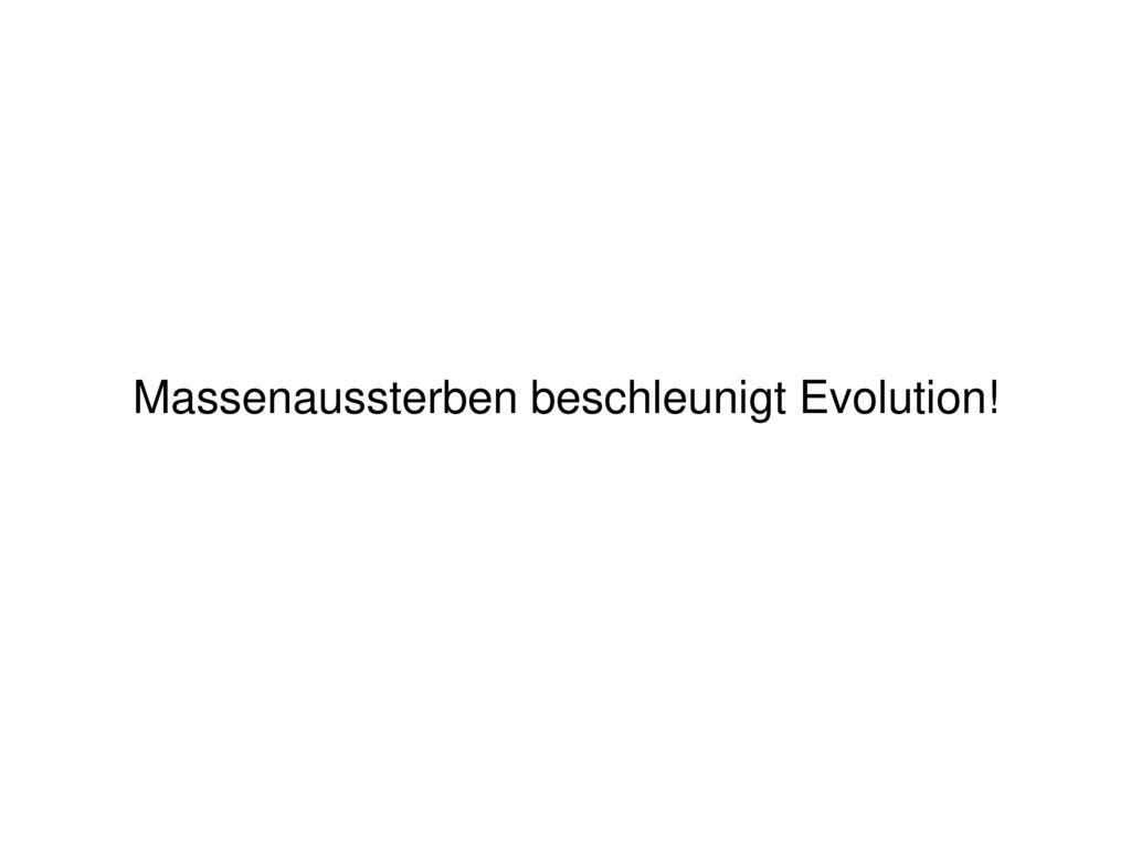 Massenaussterben beschleunigt Evolution!
