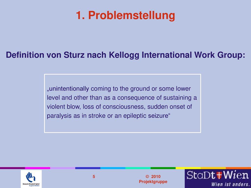Definition von Sturz nach Kellogg International Work Group: