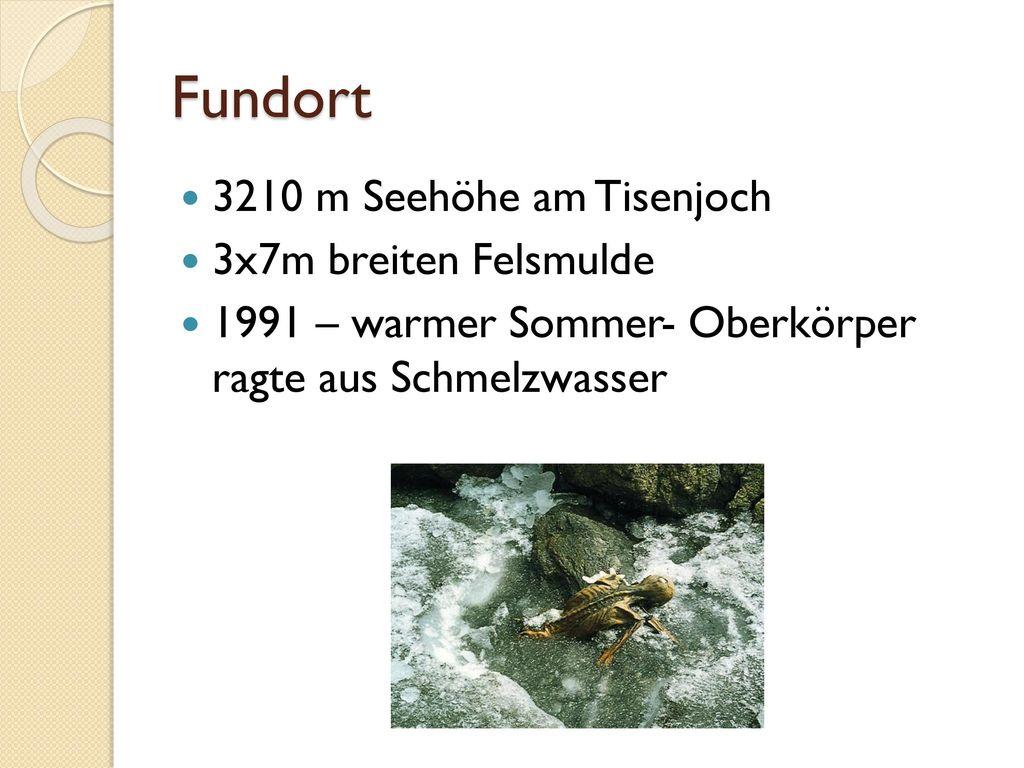 Fundort 3210 m Seehöhe am Tisenjoch 3x7m breiten Felsmulde