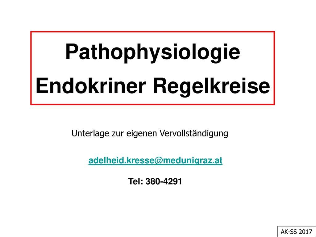 Endokriner Regelkreise