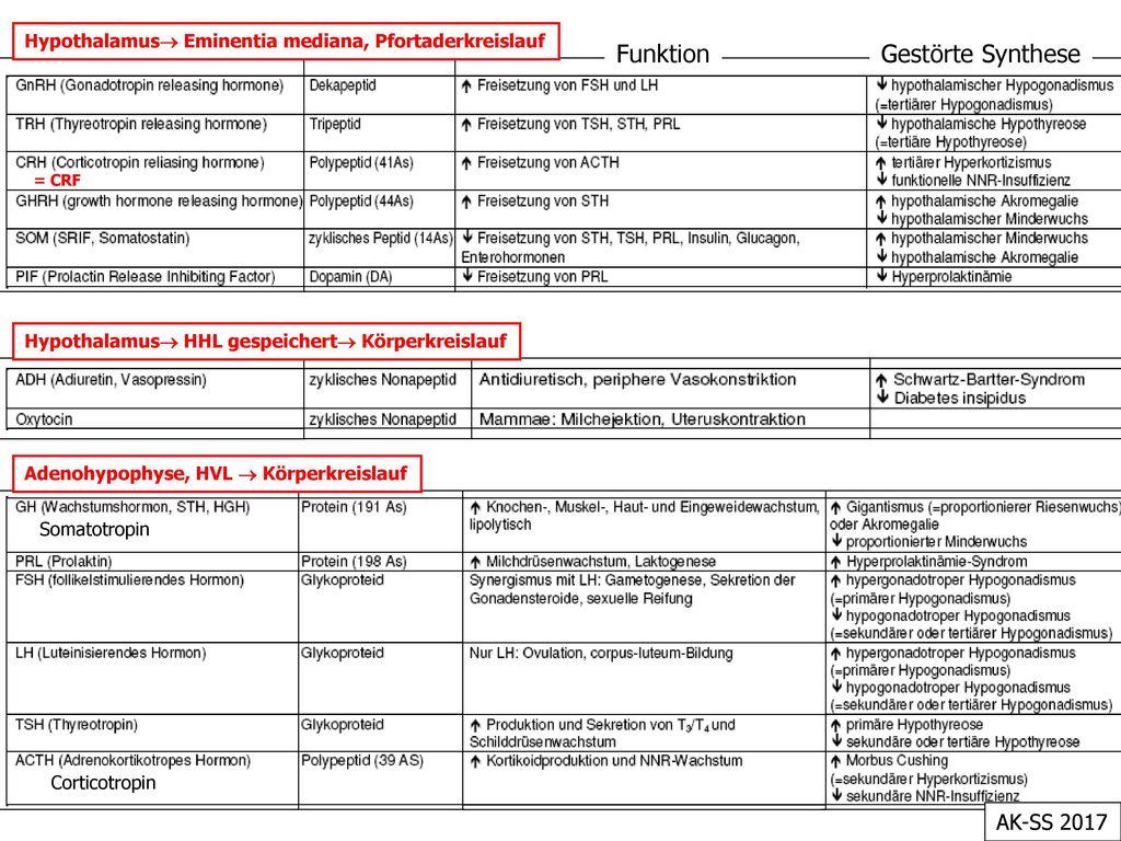 Funktion Gestörte Synthese AK-SS 2017