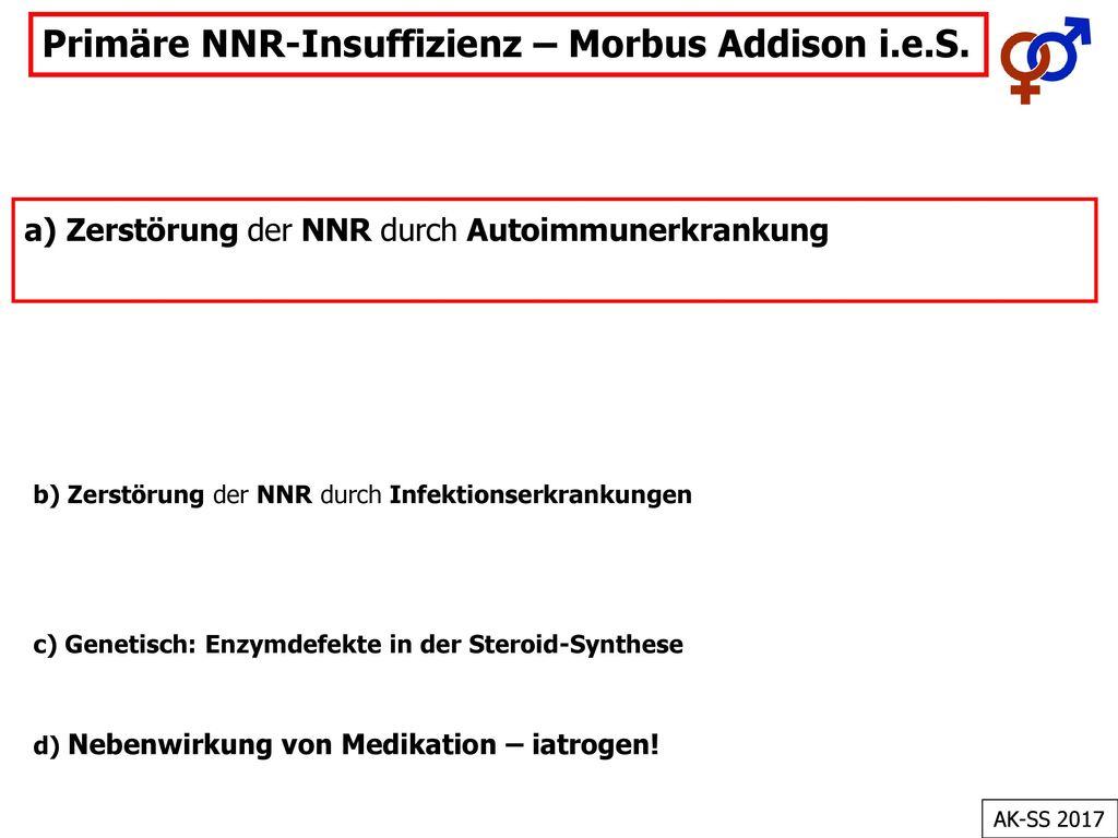 Primäre NNR-Insuffizienz – Morbus Addison i.e.S.