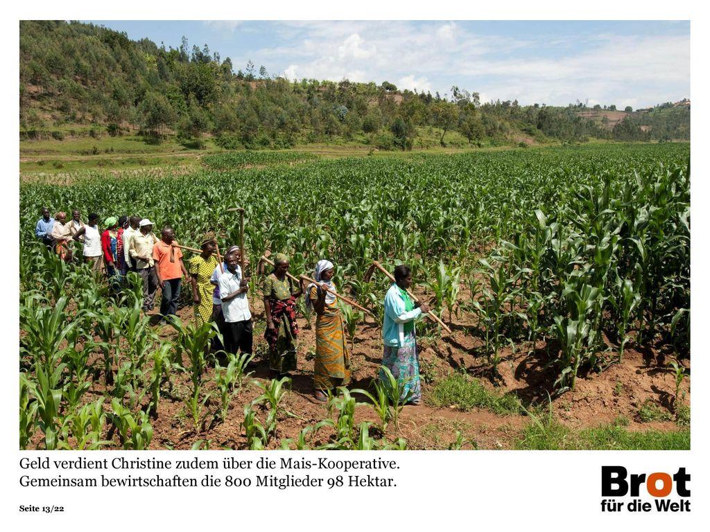 Geld verdient Christine zudem über die Mais-Kooperative