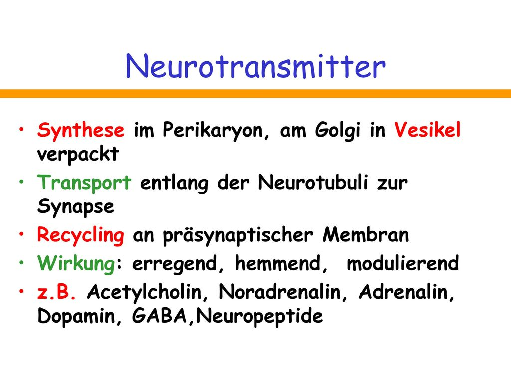 Neurotransmitter Synthese im Perikaryon, am Golgi in Vesikel verpackt