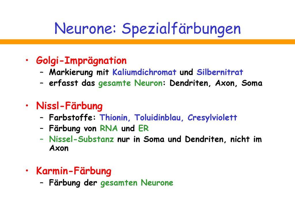 Neurone: Spezialfärbungen