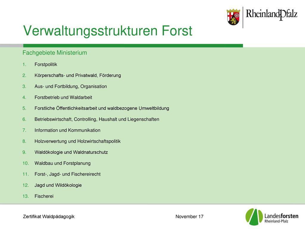 Verwaltungsstrukturen Forst