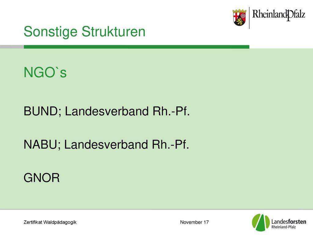Sonstige Strukturen NGO`s BUND; Landesverband Rh.-Pf.