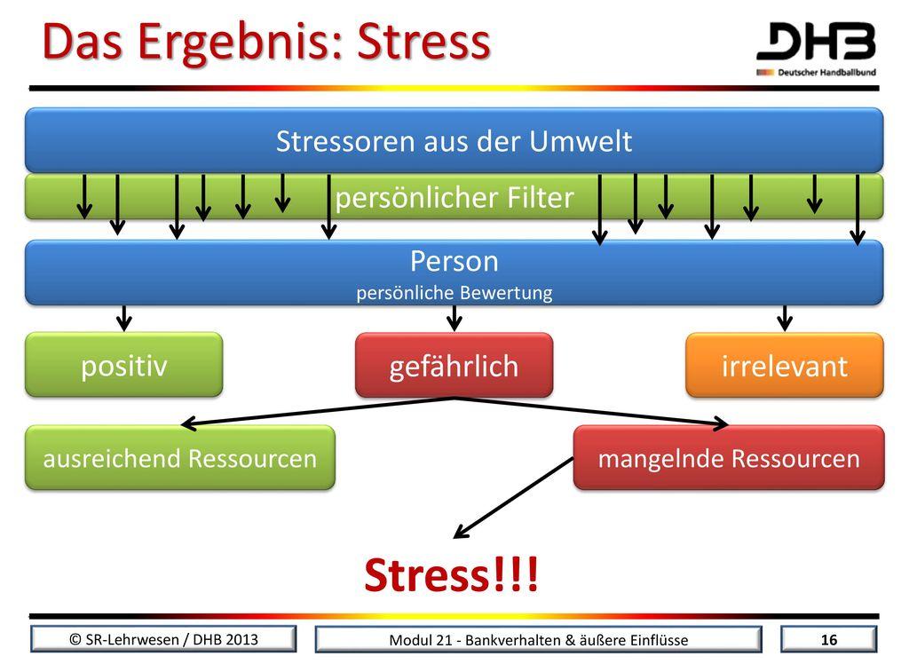 Das Ergebnis: Stress Stress!!! Stressoren aus der Umwelt