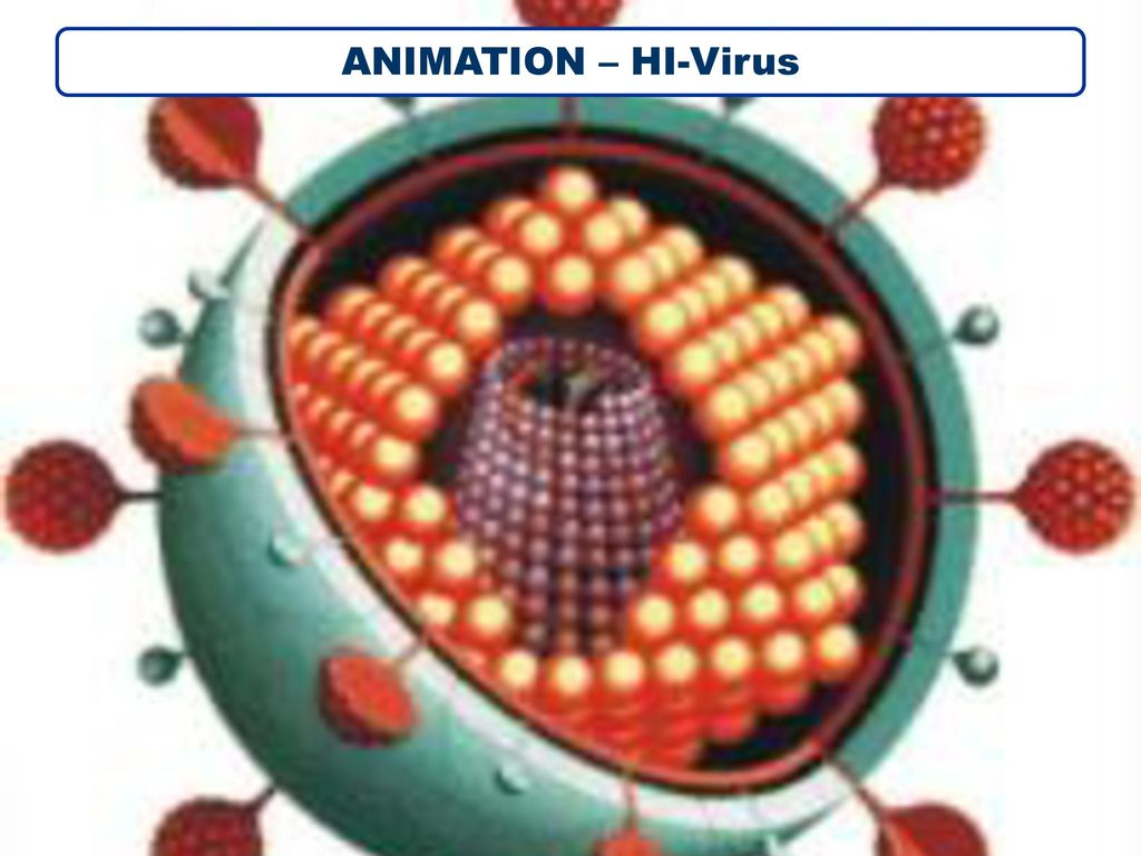 ANIMATION – HI-Virus