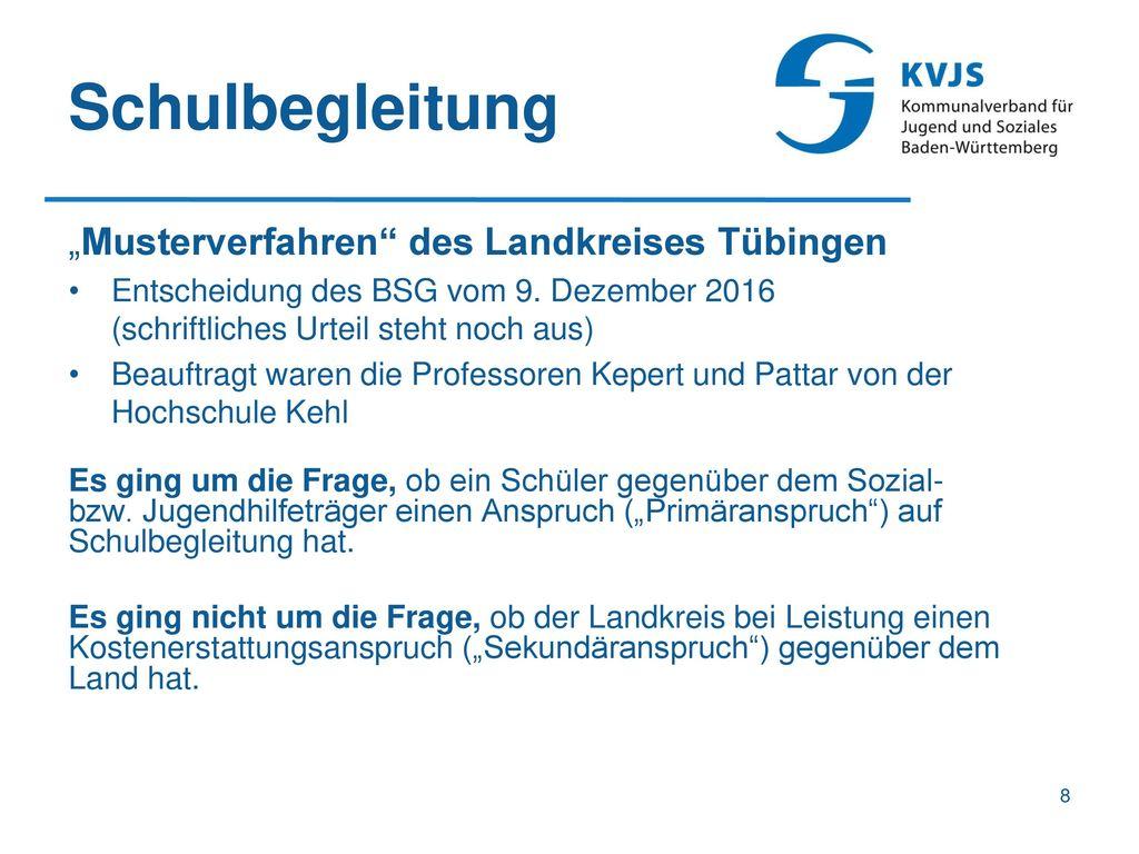 """Schulbegleitung """"Musterverfahren des Landkreises Tübingen"""