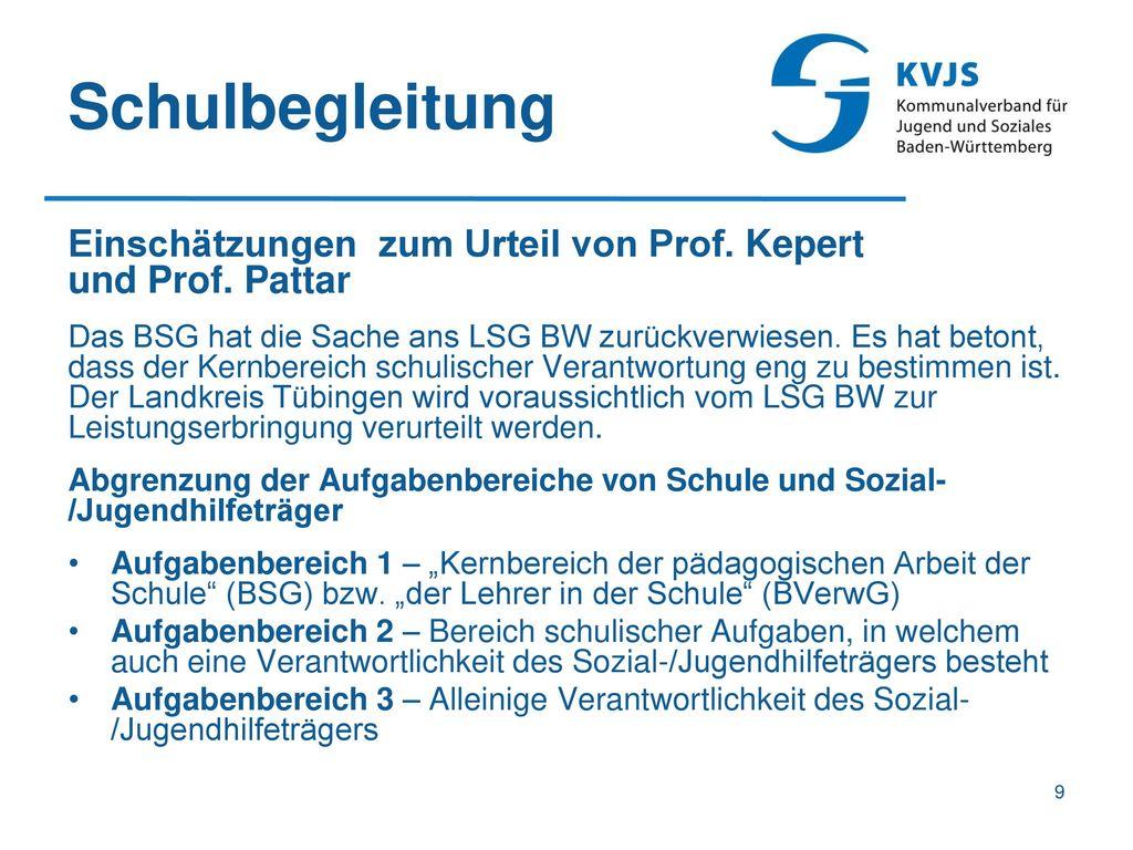 Schulbegleitung Einschätzungen zum Urteil von Prof. Kepert und Prof. Pattar.