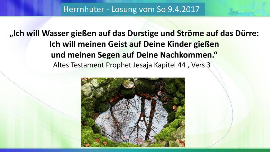 Herrnhuter - Losung vom So 9.4.2017