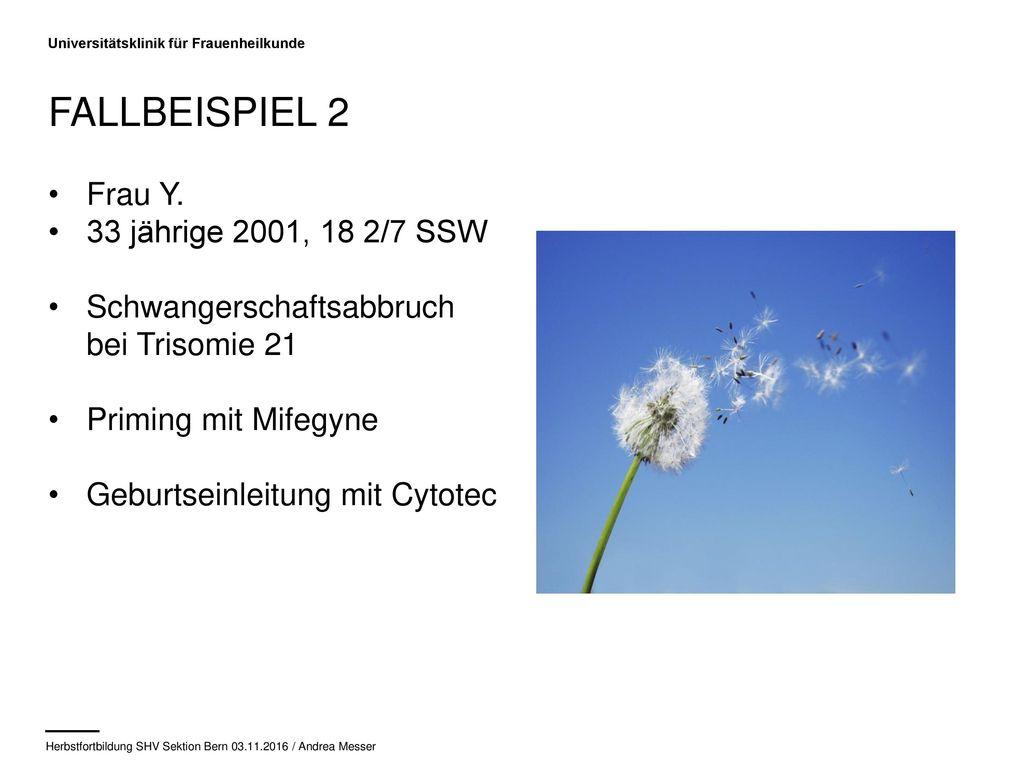 Fallbeispiel 2 Frau Y. 33 jährige 2001, 18 2/7 SSW