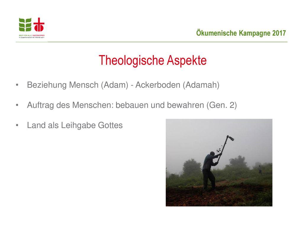 Theologische Aspekte Beziehung Mensch (Adam) - Ackerboden (Adamah)