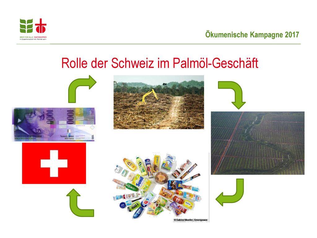 Rolle der Schweiz im Palmöl-Geschäft