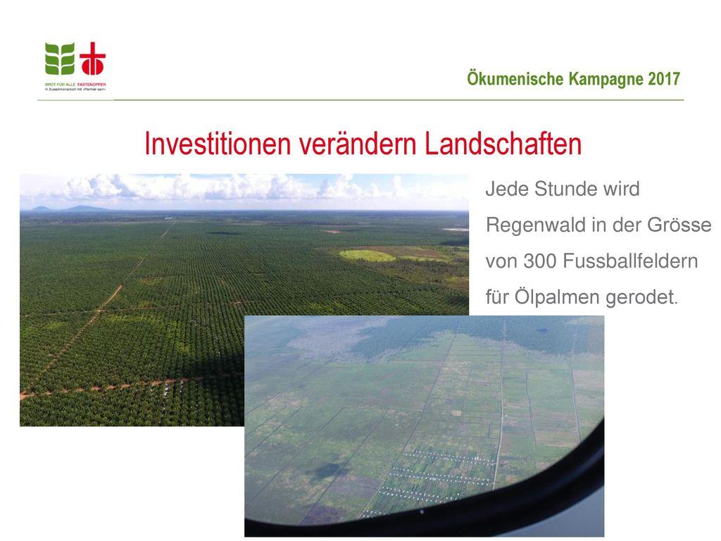 Investitionen verändern Landschaften
