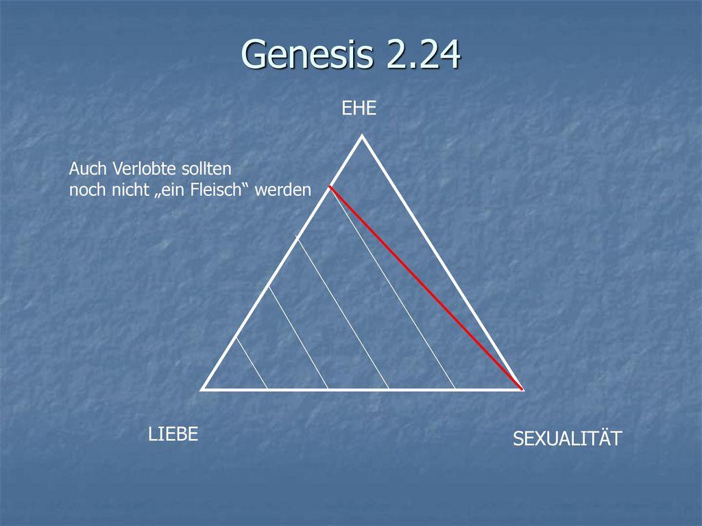 Genesis 2.24 EHE LIEBE SEXUALITÄT Auch Verlobte sollten