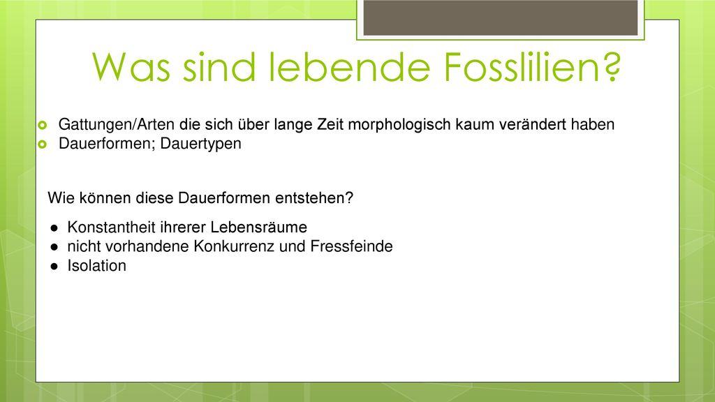 Was sind lebende Fosslilien