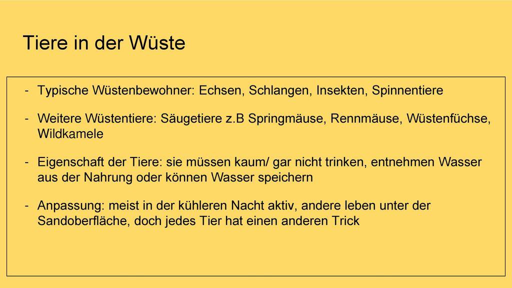Großzügig Tier Anpassung Arbeitsblatt Galerie - Mathe Arbeitsblatt ...