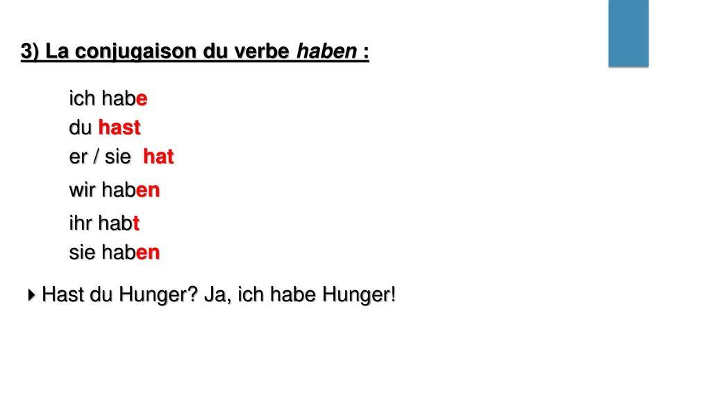 3) La conjugaison du verbe haben :