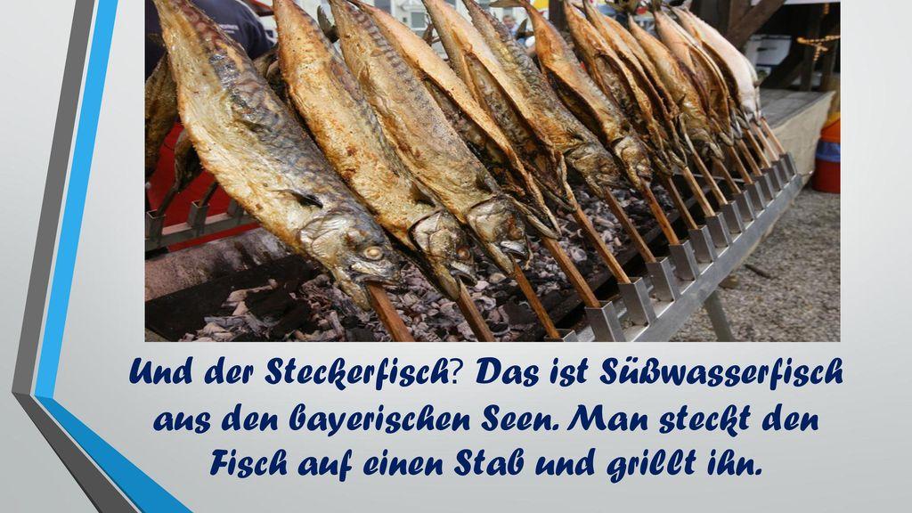 Und der Steckerfisch. Das ist Süßwasserfisch aus den bayerischen Seen