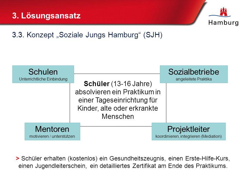 3. Lösungsansatz Schulen Sozialbetriebe Mentoren Projektleiter