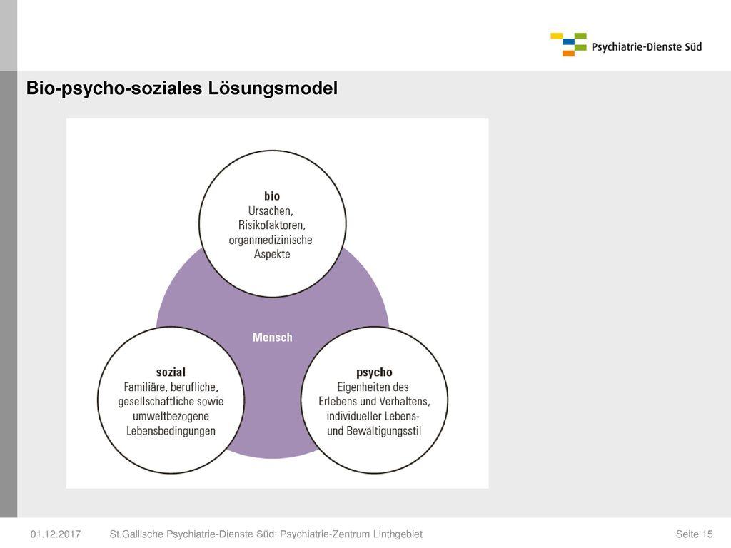 Bio-psycho-soziales Lösungsmodel