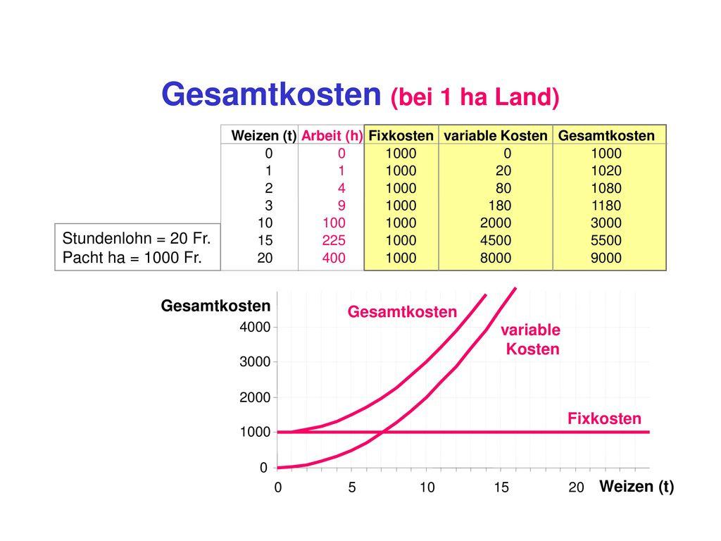 Land (1 Hektar, gepachtet)