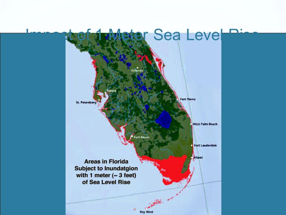 Impact of 1 Meter Sea Level Rise