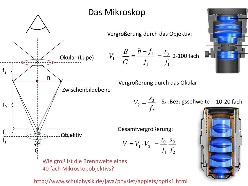 maximale vergrößerung lichtmikroskop