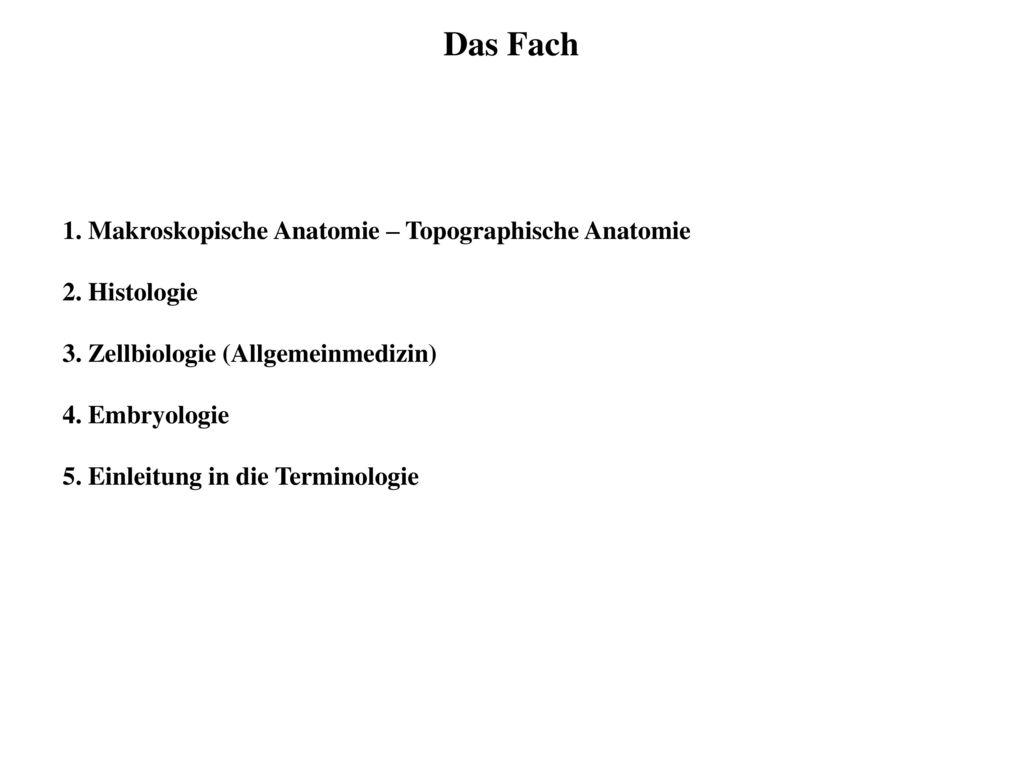 Erfreut Makroskopische Anatomie Galerie - Menschliche Anatomie ...